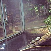 Terrarienhalle des Reptiliums Landau