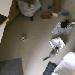 Samtpfote - Katzenzimmer 2