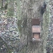 People's Postcode Lottery Squirrelcam