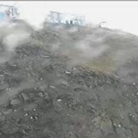Puffincam im Sumburgh Head Reservat
