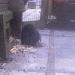 Kaninchencam